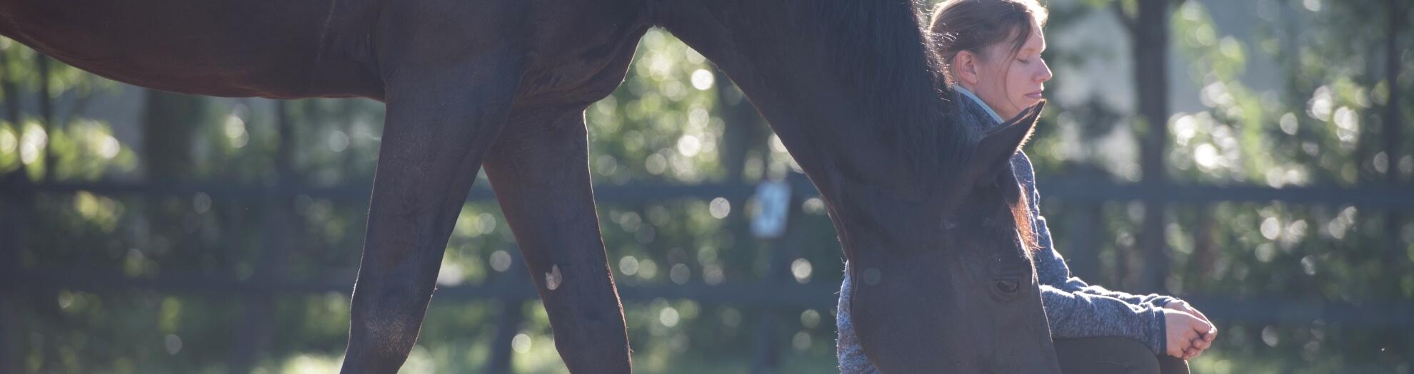 Ruitermeditatie - Horse Power Life Power