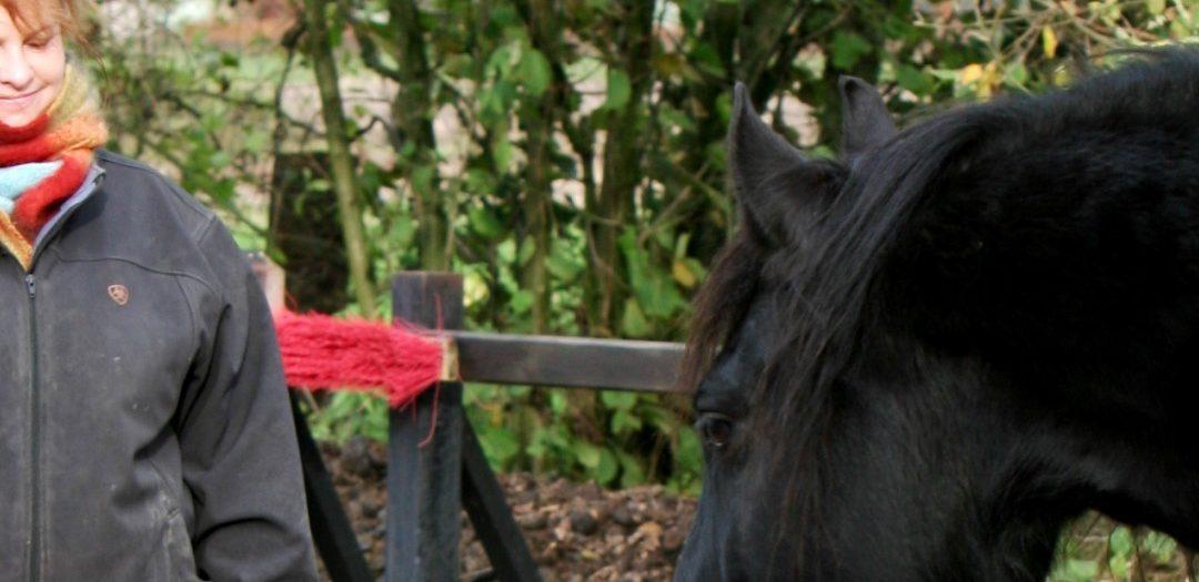 In verbinding met je paard deel 3 – Maak contact met jezelf