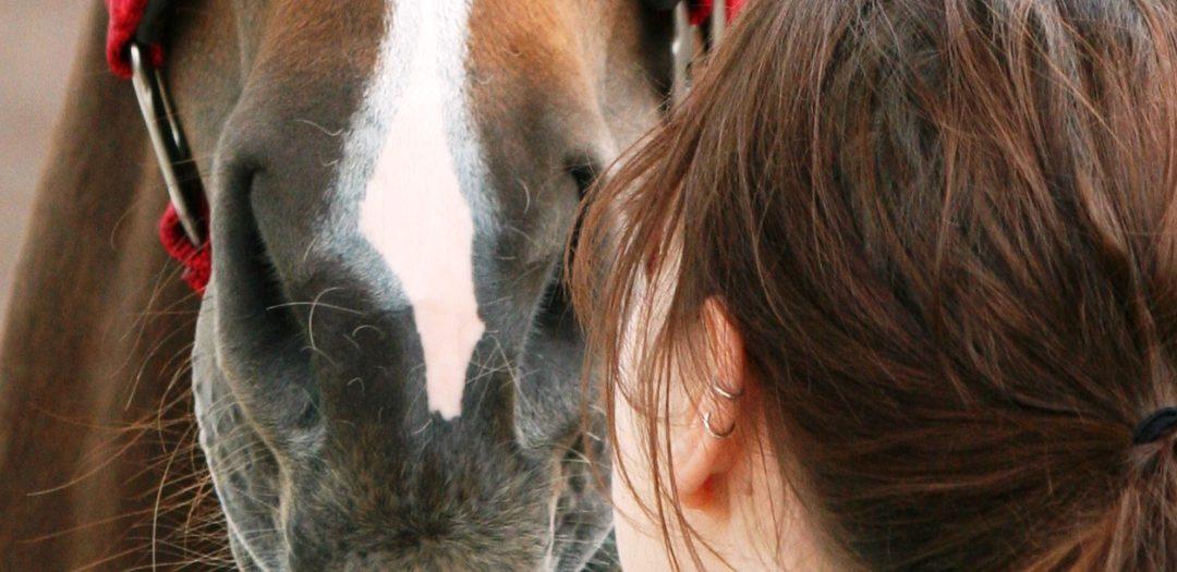 In verbinding met je paard deel 4 – Helemaal jezelf zijn
