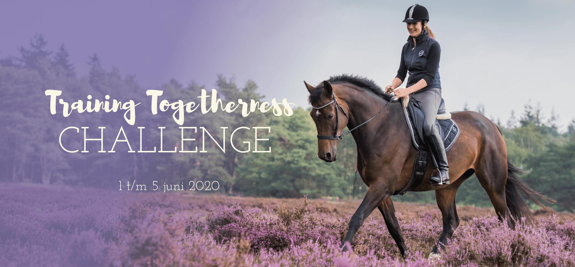 Relax & Ride Challenge