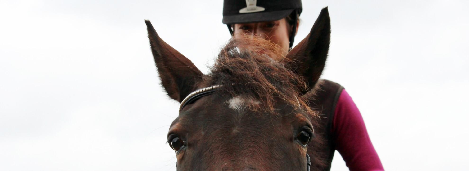 #11 Wat als je frustratie voelt in de training met je paard - Two Happy Athletes Podcast