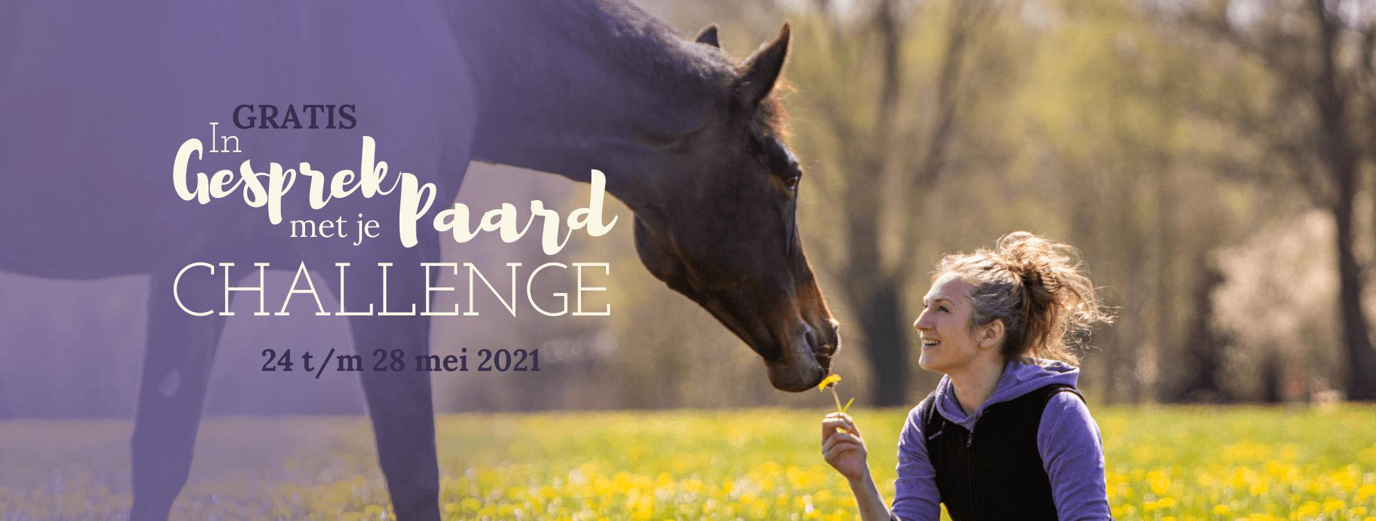 In Gesprek met je Paard Challenge - Horse Power Life Power
